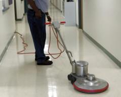 servicio de limpieza integral Coma-ruga